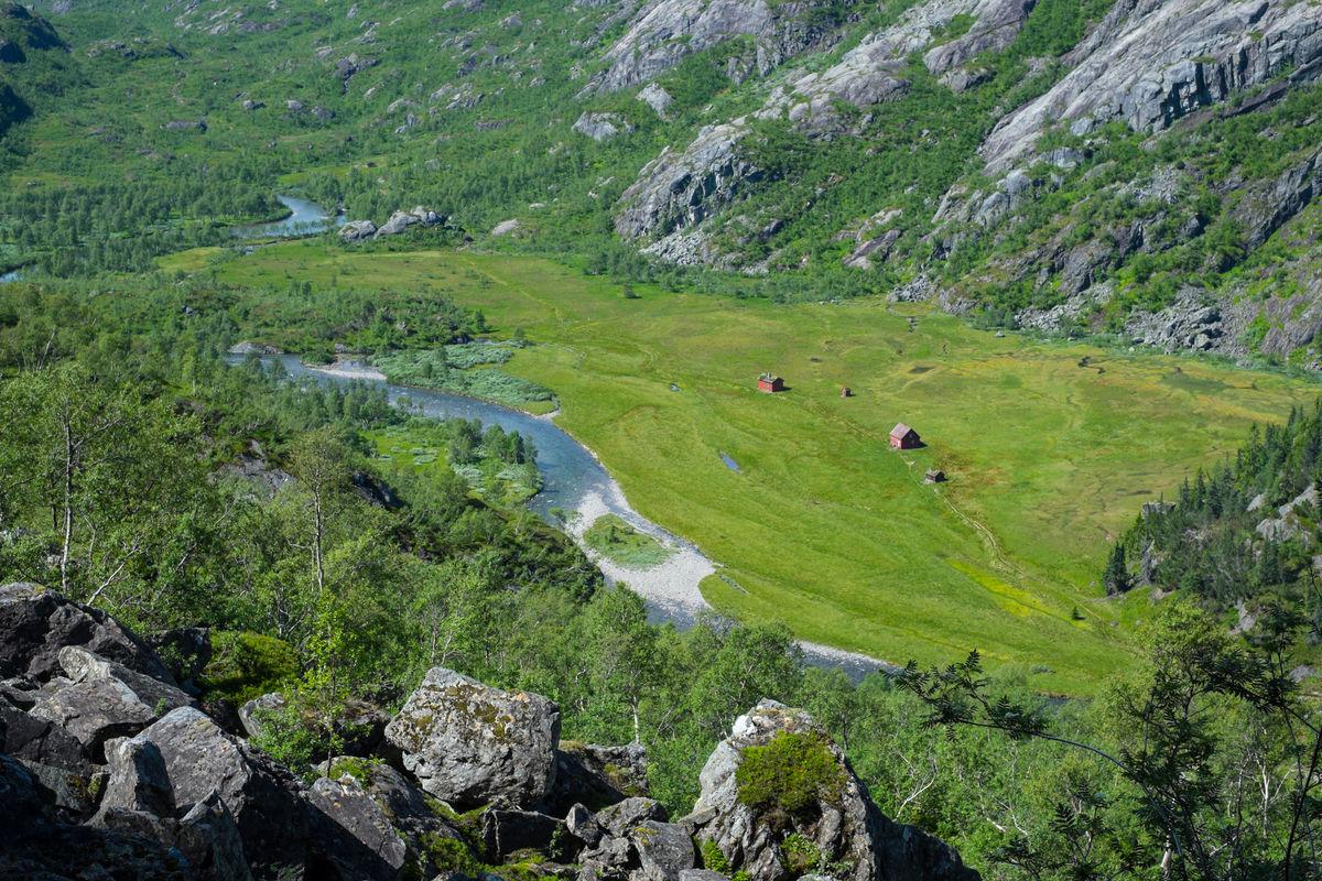 Det er ikke vanskelig å skjønne at Kvanndalen har blitt omtalt som den gjeveste stølsdalen i hele Suldal. Her er det frodig!