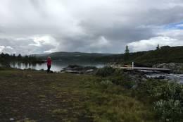 Ved oset i østenden av Mykingsjøen -  Foto: Solveig Hjallen