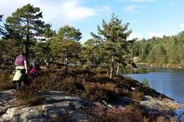 Et turfølge ankommer Guritjønn. - Foto: Lars Jøran Sundsdal