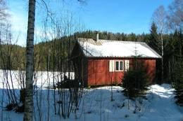 Røyrivannskoia  - Foto: Per Roger Lauritzen