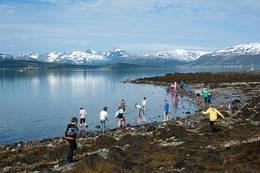 Fra den kulturelle skolesekken 2012. Skoleklasser lærer om nordnorsk kystliv ved Folkeparken. -  Foto: Marit Hildung / Perspektivet Museum