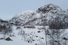 Kvitlen i snø. Normalt ikkje gode skiforhold i dette terrenget - Foto: Steven Hegelstad