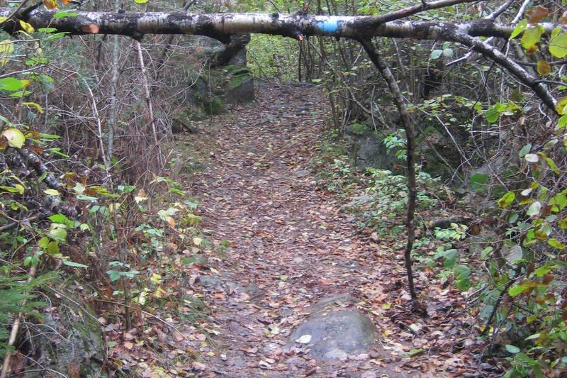 På vei opp bakken fra Søgne Kunstgress.