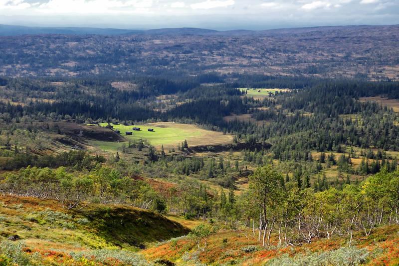 Utsikt mot Svenskmoen og Stormoen. Seterstølene ligger i Roltadalen sammen med Schulzhytta.