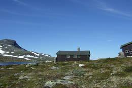 Sommertur til Sulebu - Foto: Synnøve Spangelo