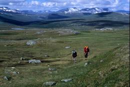 Fra fjellene i Rana - Foto: Per Roger Lauritzen