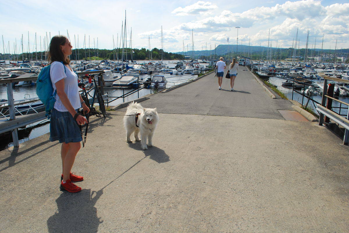 Det er fint å gå på kaia i Solvik Marina, både med og uten rullestol.