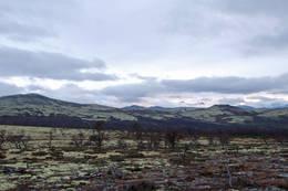 Utsikt fra Reinslia - Foto: Ukjent