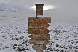 Stien til Runde en vinterdag - Foto: Martin Hauge-Nilsen