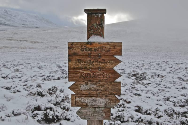 Stien til Runde en vinterdag