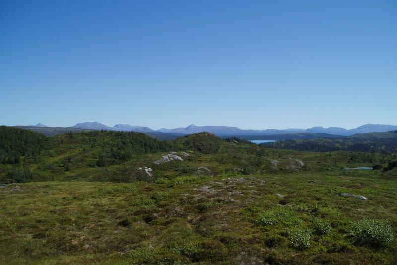 Stien på vei til Langvasshytta. Utiskt mot Blåfjella - Skjækerfjella nasjonalpark