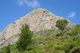 Kvamshesten i Sunnfjord - Foto: Oddvard Isene