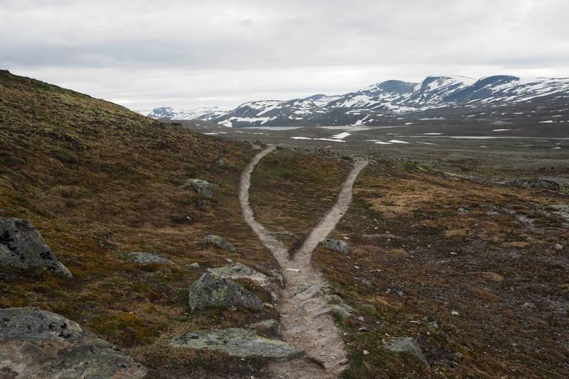 Stien deler seg før Åmodtdalshytta på Dovrefjell.