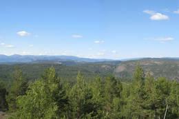 Sauås 389 moh -  Foto: Ukjent