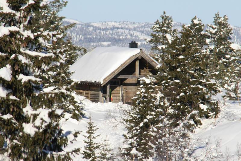 Vintertur til Sveinsbu 2011