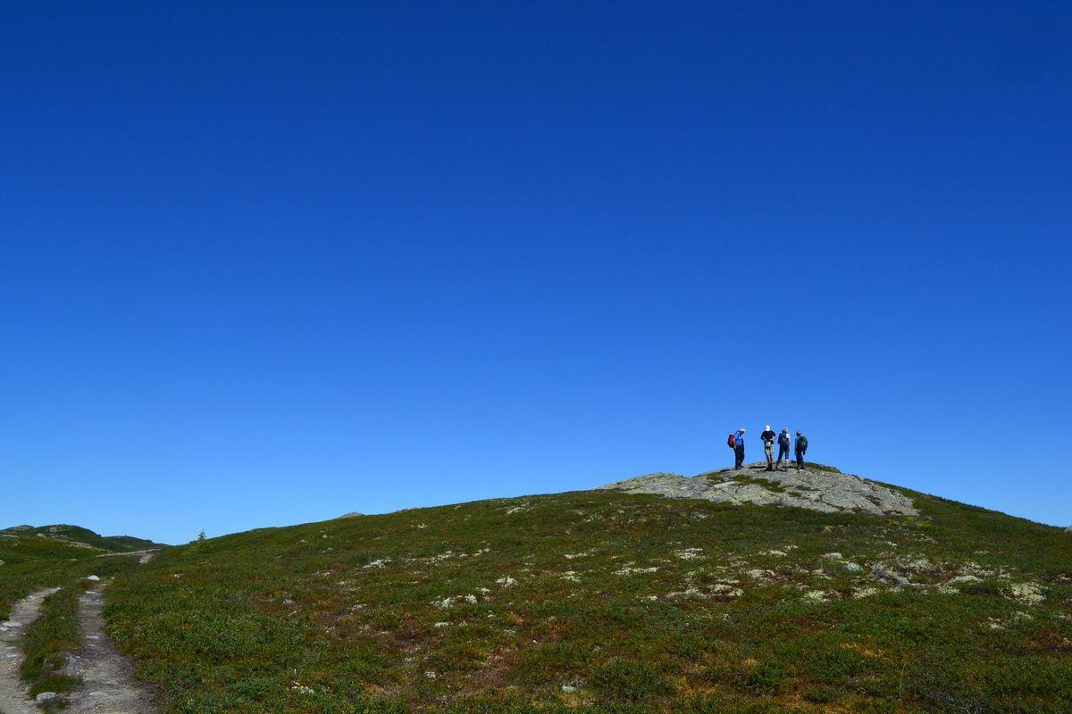 Ved Prestkjerringa 1060 moh