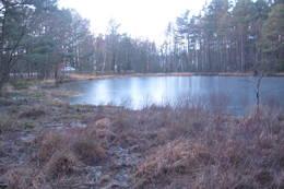 ITjønna ble det skåret is til fiskemottaket på Langenes. - Foto: Floke Bredland