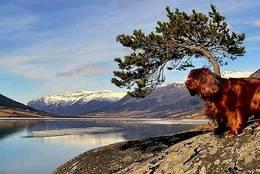 Nydeleg utsikt frå Skimhytta mot Skjåk. - Foto: Wenche Kroken