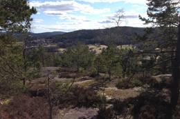 Landlig utsikt på vei mot toppen - Foto: Anders Sten Nessem
