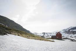 Stavali sommeren 2015 da det var mye snø i området. - Foto: André Marton Pedersen