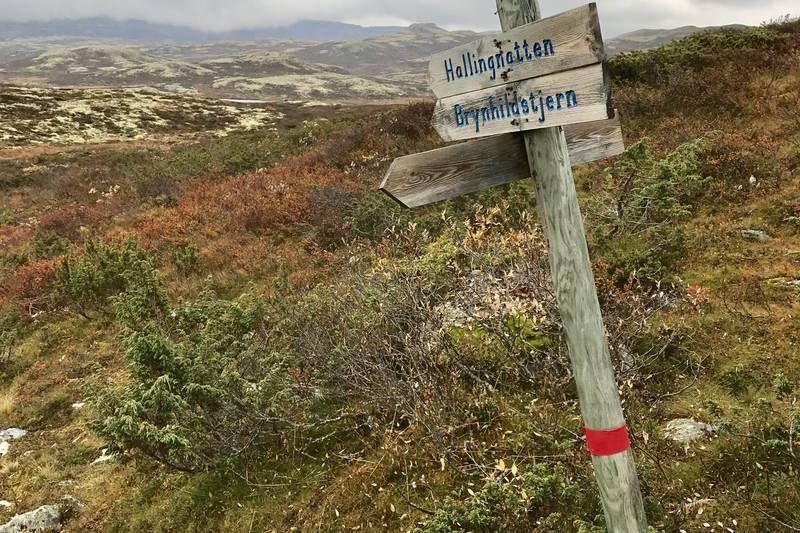 Når man treffer stien fra Nystølen, fortsett i retning Hallingnatten