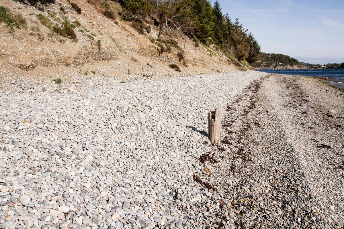 Bølgene som bryter mot Vestrefjæra kaster stein innover land. Lette, flate steiner kommer lengst.