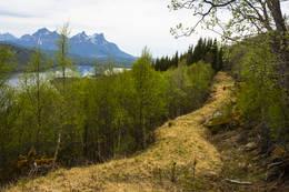 God tursti - Foto: Kjell Fredriksen