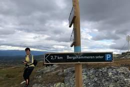 Godt skilta og merka til og fra Bergshammaren -  Foto: Hilde Bergan