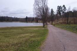 Bogstad ved badeplassen - Foto: Dag Olav Brækkan