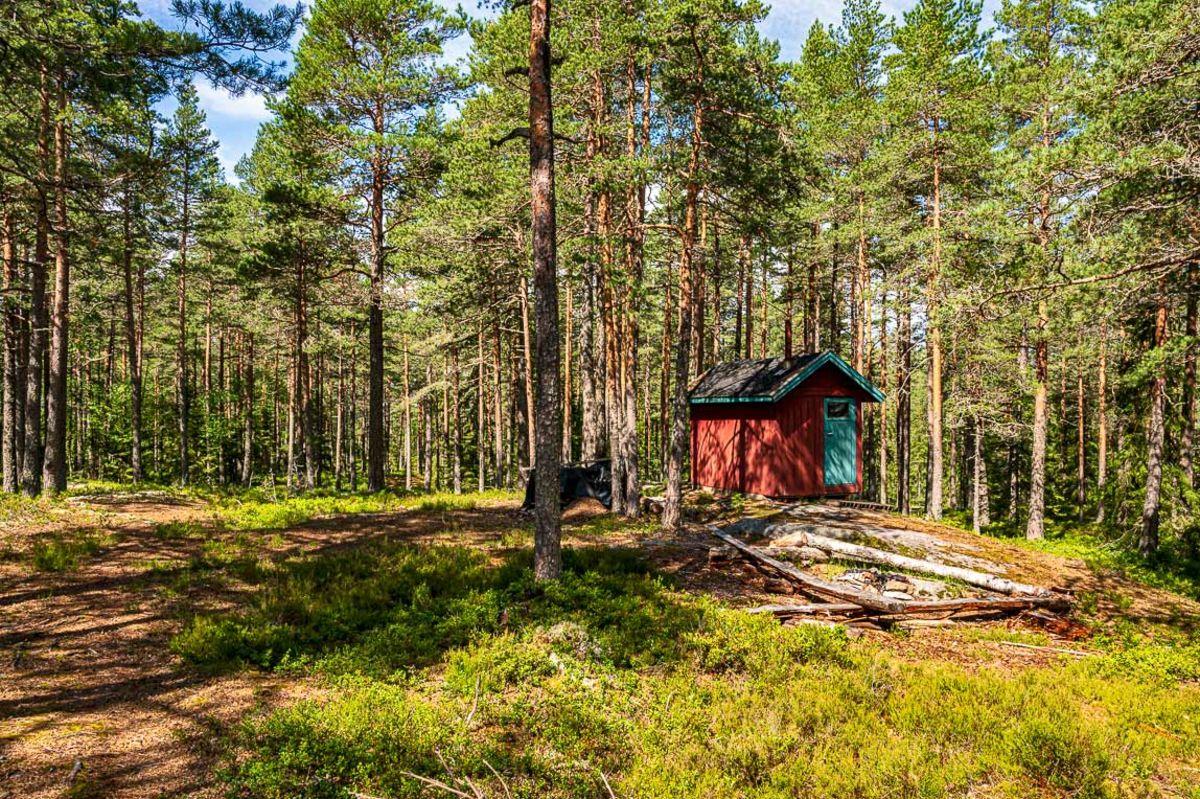 Ei lita rød hytte på toppen av Neslerudåsen