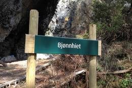 Bjønnhiet -  Foto: Johan Eide