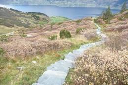 Stairway to heaven - utsikt over Reiseter og Sørfjorden - Foto:
