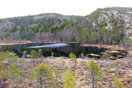 Oterågvatnet fra høyde vest for vatnet. Vi skal opp på høyden i bakgrunnen - Foto: Kjell Fredriksen