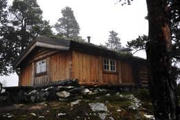 Damtjønna - Foto: Marius Nergård Pettersen