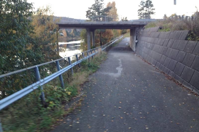 Strandsti øst: Ta gangveien under  brua til Moseidmoen