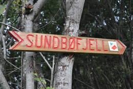Dette skiltet møter du nede ved hovedveien. En tur det er lett å finne frem til. -  Foto: Siri Hafnor