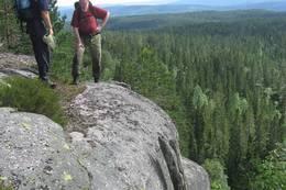 Stup i Finnemarka - Foto: Pernille Rød Larsen