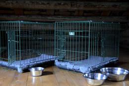 2 hundebur i annen etasje - Foto: