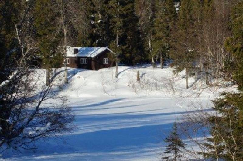 Skispor over Forra til Branok