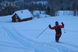 Skiløper ned mot hytta - Foto: Pernille Rød Larsen/DOT
