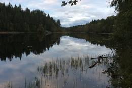 Hvamsetertjernet i september -  Foto: Mette Rolstad