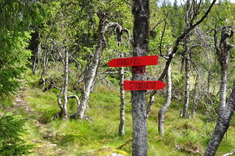 Følg skiltingen mot Strøslifjell