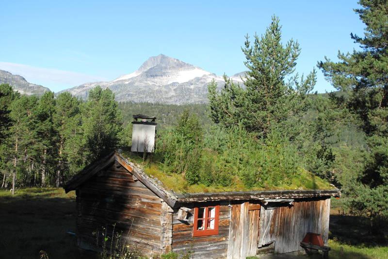 Det er vakkert på Trollheimshytta. På gode værdager er det gjester også her. Et helt spesielt tun for glade fjellvandrere