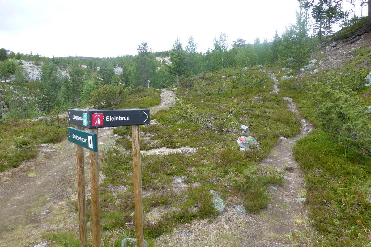 Stidele mellom Diktarstien og stien til Steinbrua