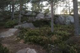 På vei opp. - Foto: Einar Vestnes