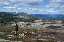 Rypeskaret mot Gaustatoppen langt bak -  Foto: Arne W. Hjeltnes