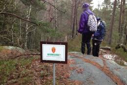 Naturreservat Sagevann, men også i området sør for Skråstad varden - Foto: Ukjent