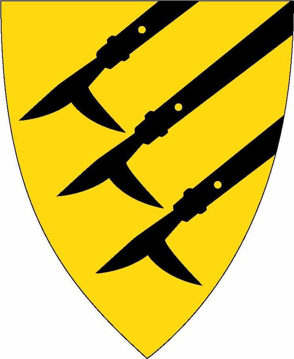 Profilbilde for Åsnes kommune