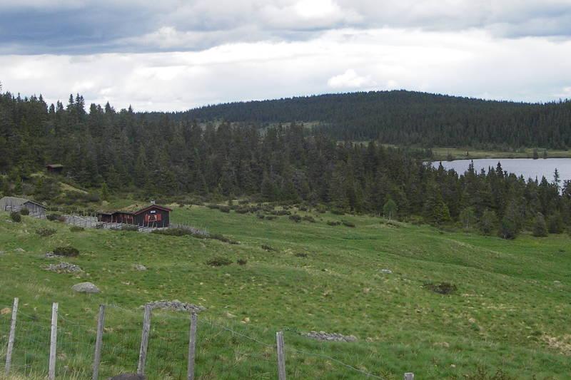 Kokslien seter på Skjellbreida