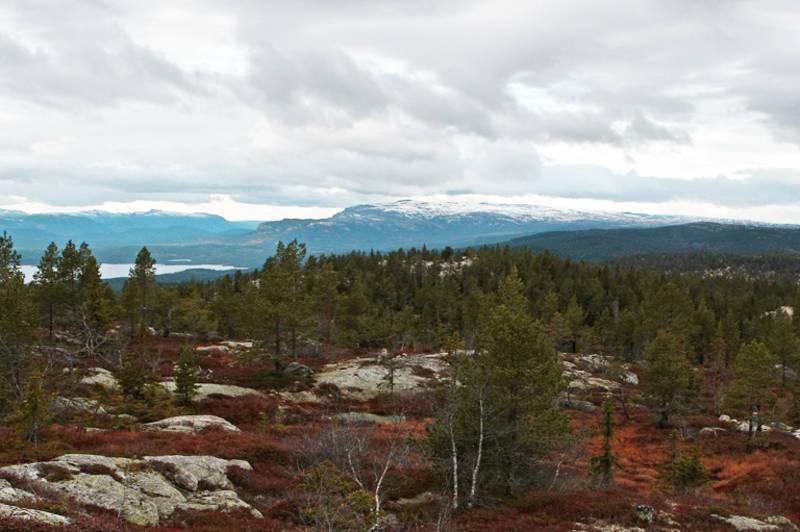 Follsjå og Blefjell sees i vest/nordvest.Foto: Ottar Kaasa